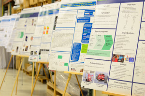photo of research posters demonstrating Education Strategy of the CCEFP